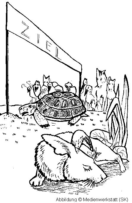 Der Hase Und Die Schildkröte Die Schildkröte Und Der Hase
