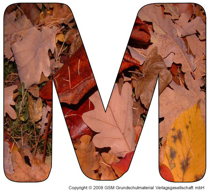 HerbstDEKOBuchstaben M und N  MedienwerkstattWissen
