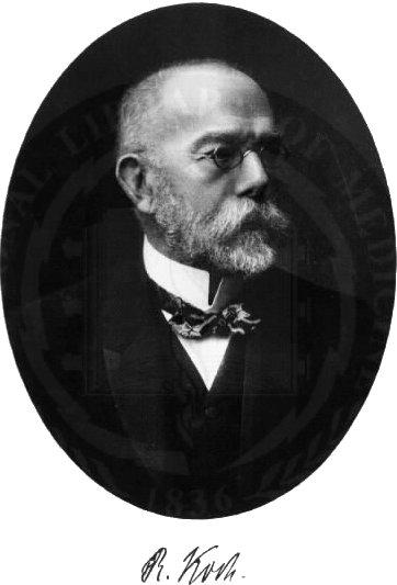 Robert koch entdecker des tuberkuloseerregers for Koch wikipedia