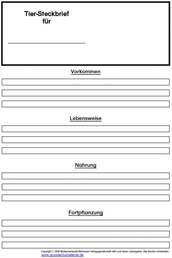 1. Vorlage Tiersteckbrief (blanko) - Medienwerkstatt