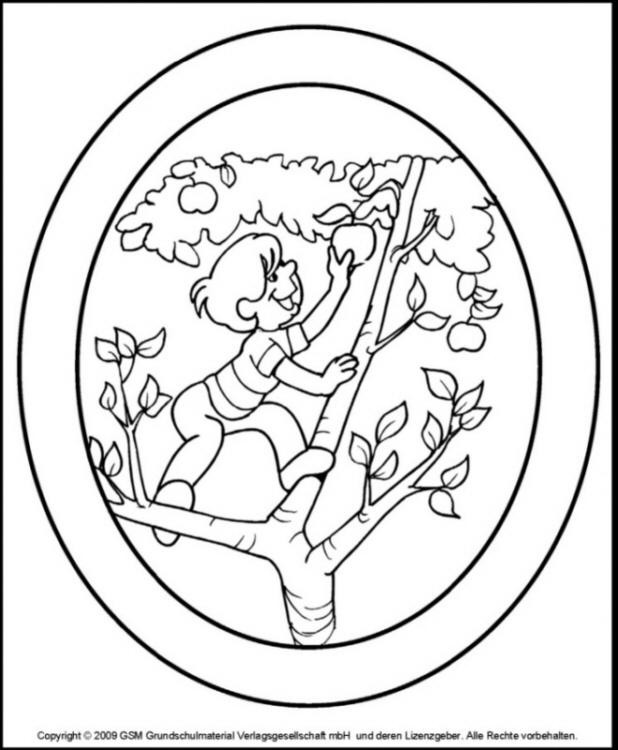 Herbstliche fensterbilder apfelbaum medienwerkstatt for Fensterbilder vorlagen kostenlos