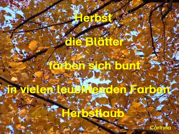 Elfchen Gedicht Cr7 Image